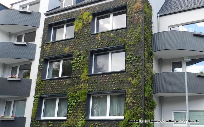 Interessant! Begrünte Fassade in Hannover Südstadt